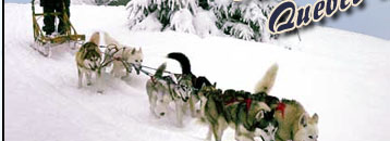 Dogsledding rides in Quebec